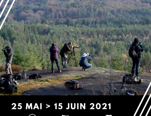 Expo photo Tour d'images du 25 mai au 15 juin